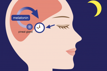 Melatonin Testing