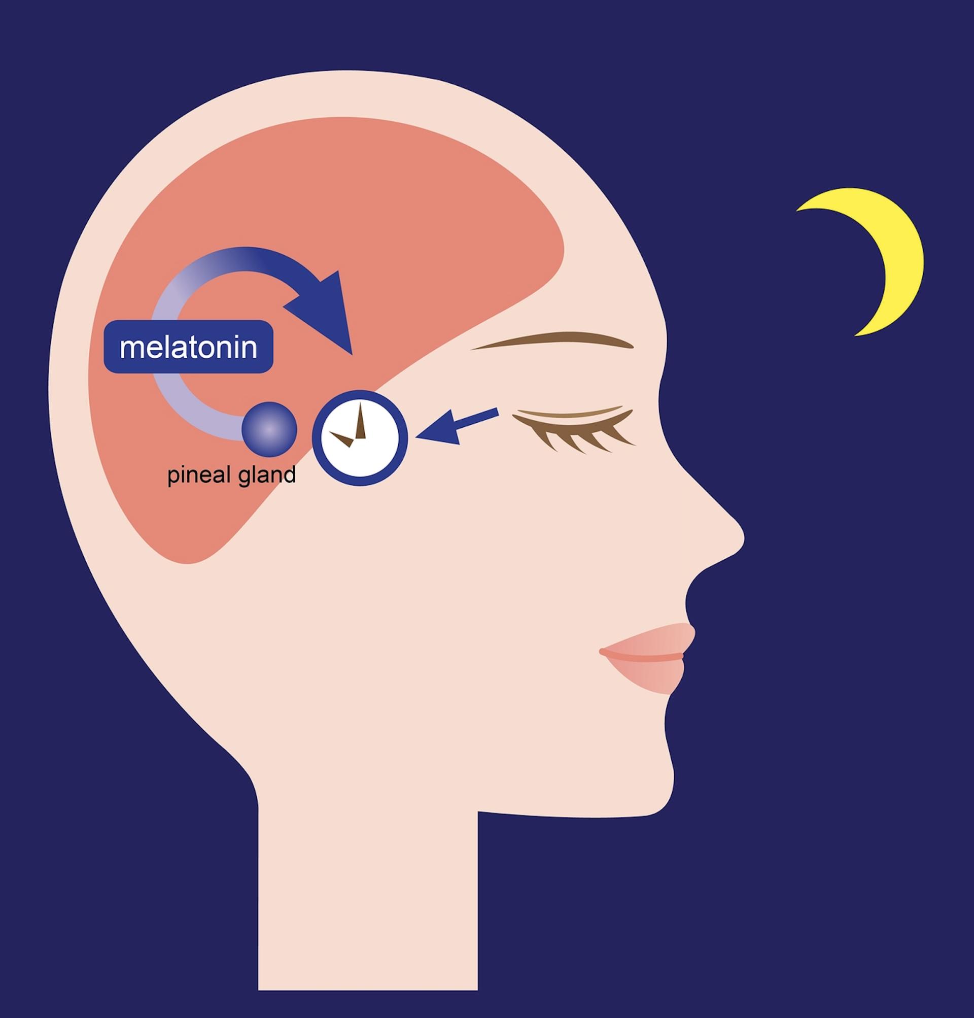 Get a melatonin test before going onto sleep medication