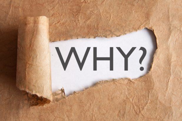 1st Principle - The Why